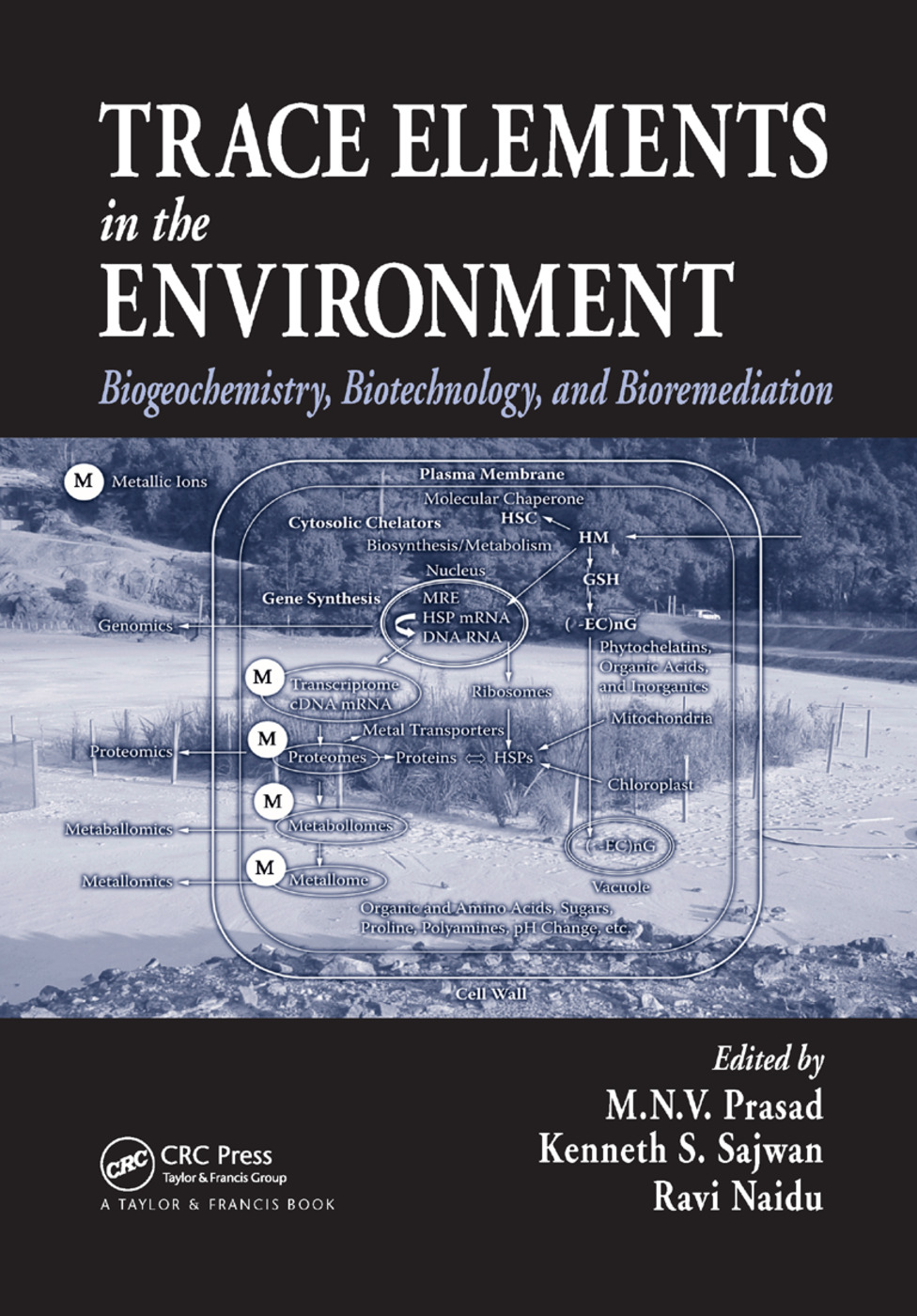 Trace Elements in the Environment: Biogeochemistry, Biotechnology, and Bioremediation, 1st Edition (Paperback) book cover