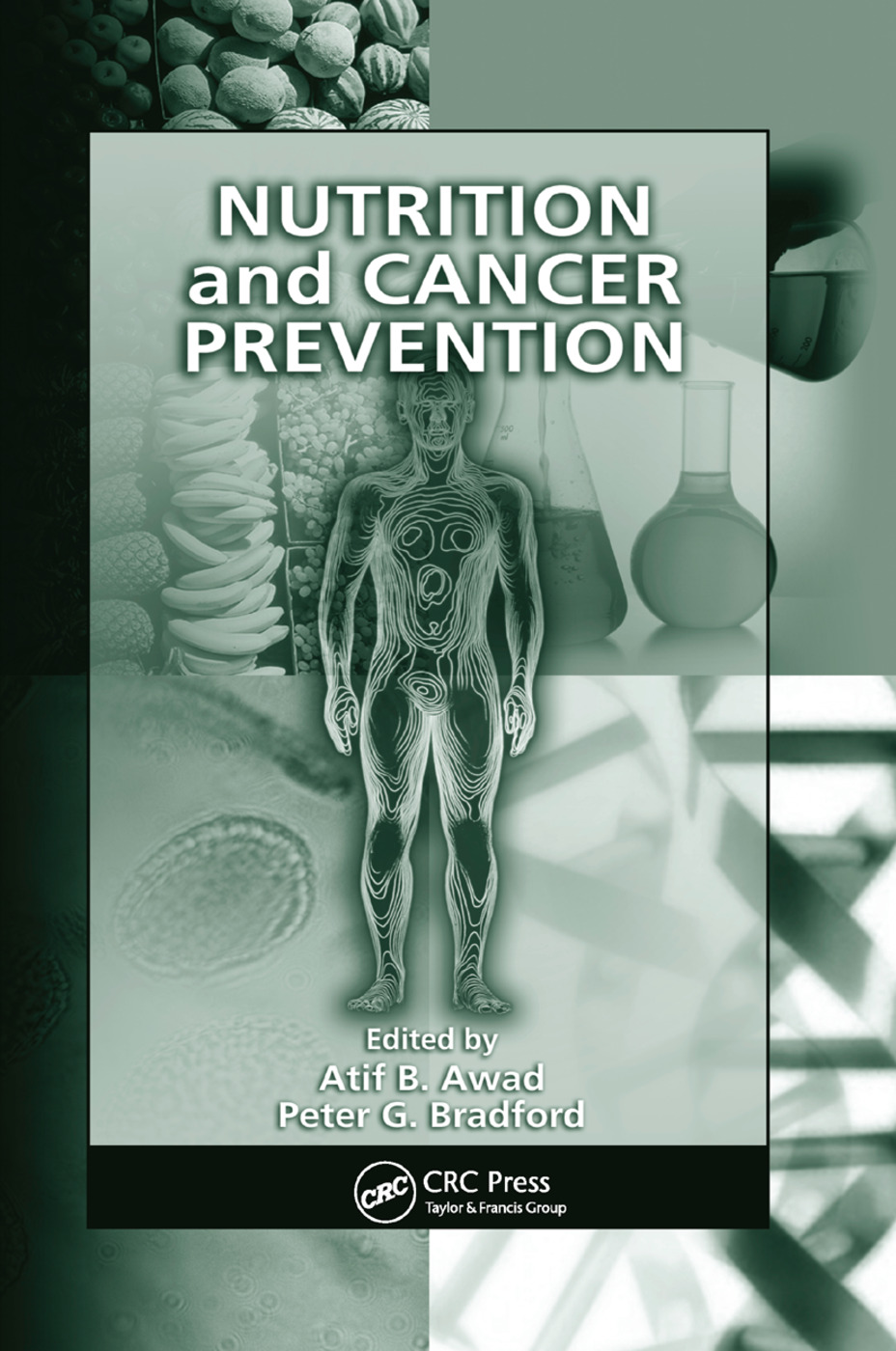 Nutrition and Cancer Prevention: 1st Edition (Paperback) book cover