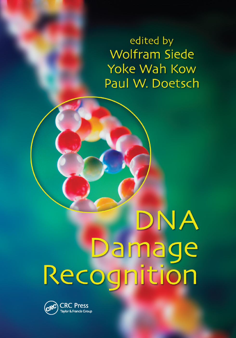 DNA Damage Recognition: 1st Edition (Paperback) book cover