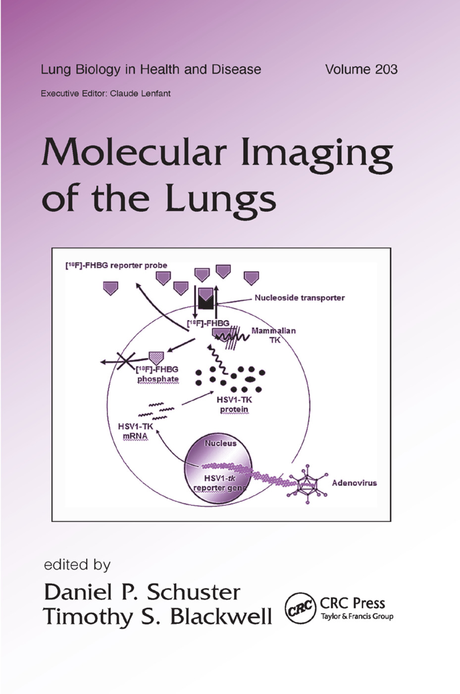 Molecular Imaging of the Lungs: 1st Edition (Paperback) book cover