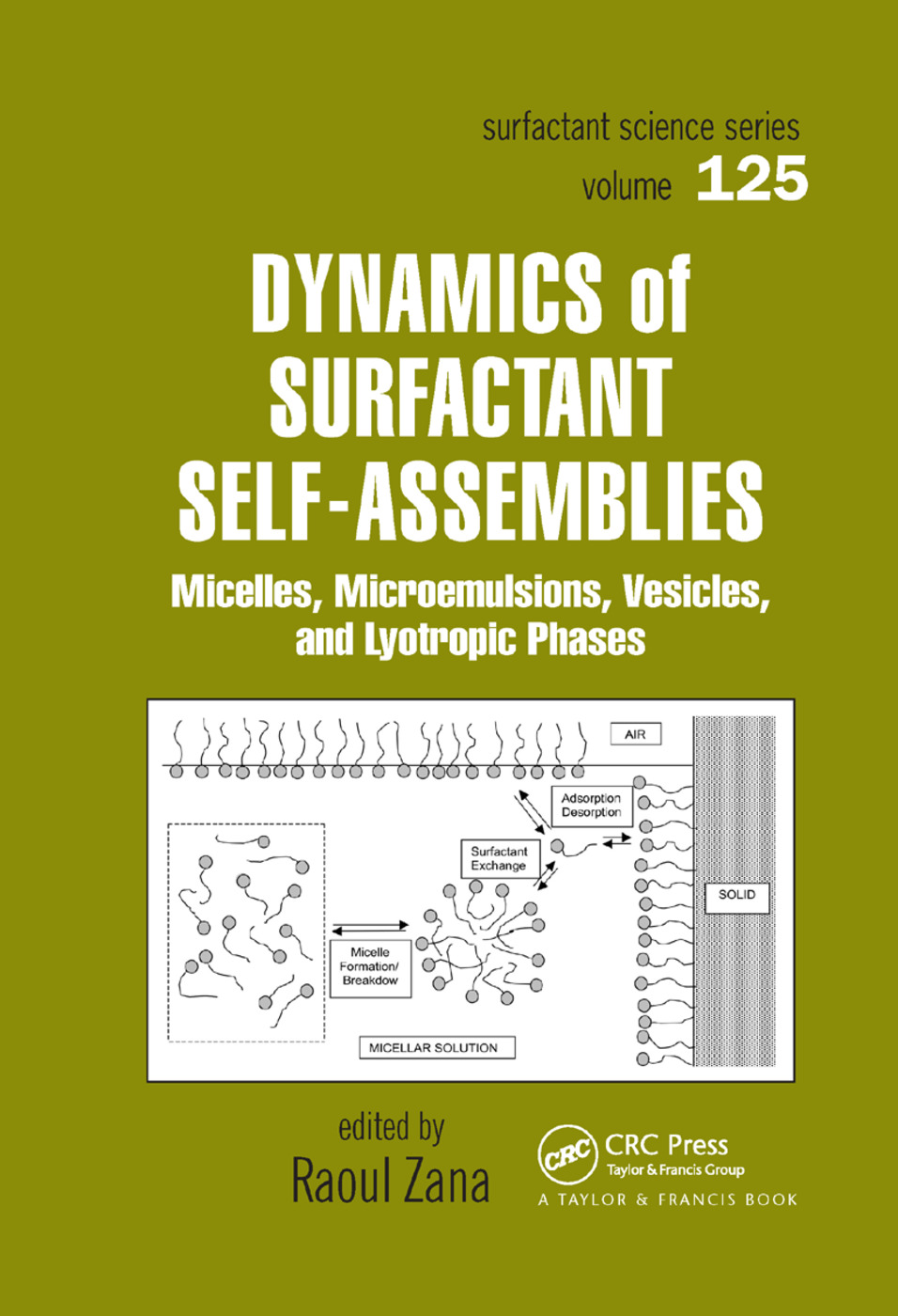Dynamics of Surfactant Self-Assemblies