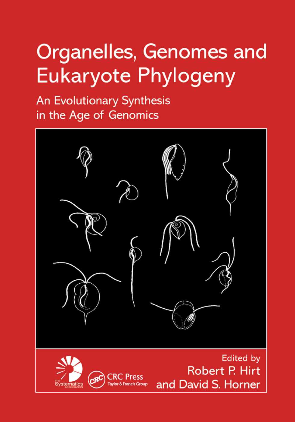 Organelles, Genomes and Eukaryote Phylogeny: An Evolutionary Synthesis in the Age of Genomics, 1st Edition (Paperback) book cover