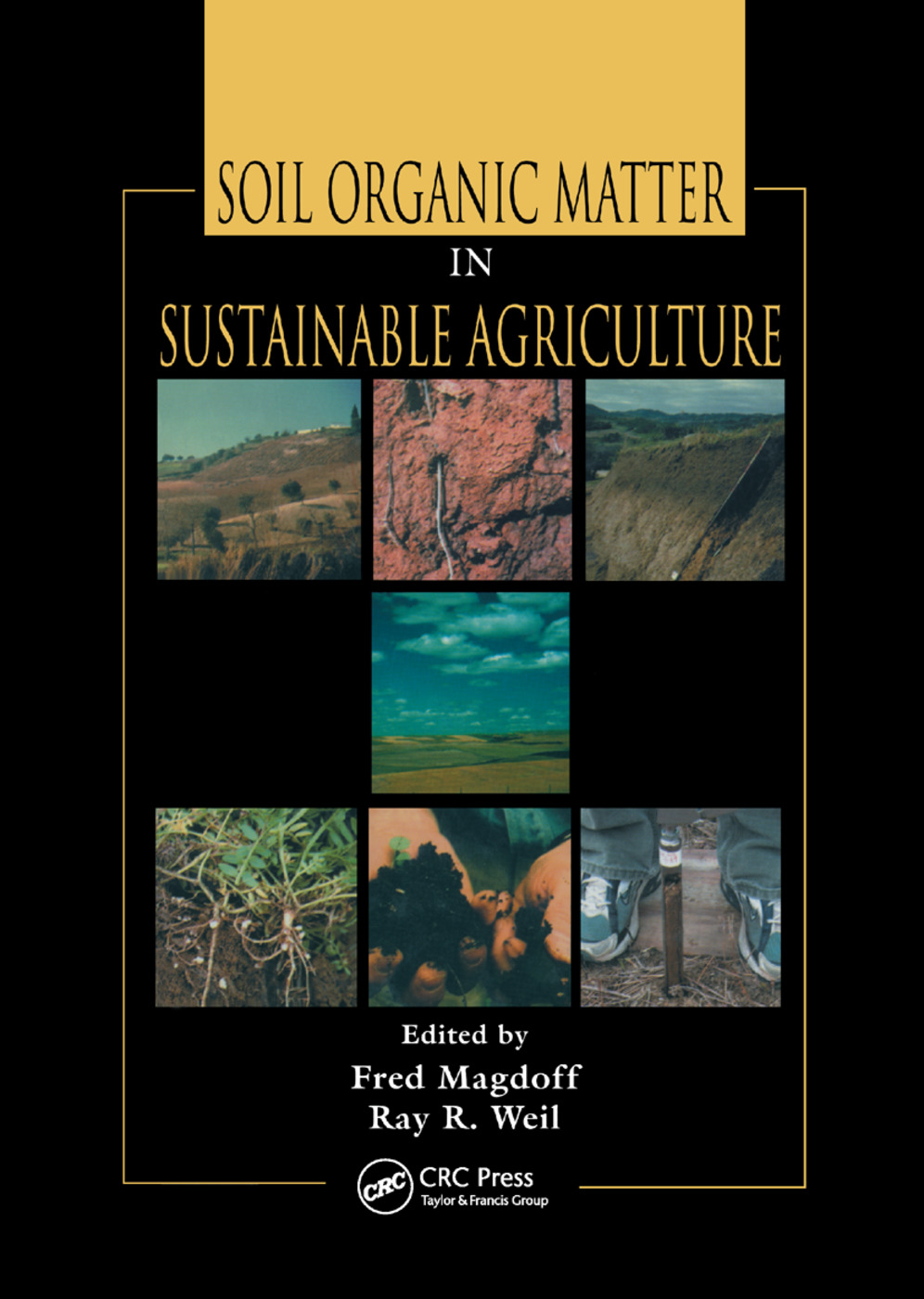 Soil Organic Matter in Sustainable Agriculture: 1st Edition (Paperback) book cover