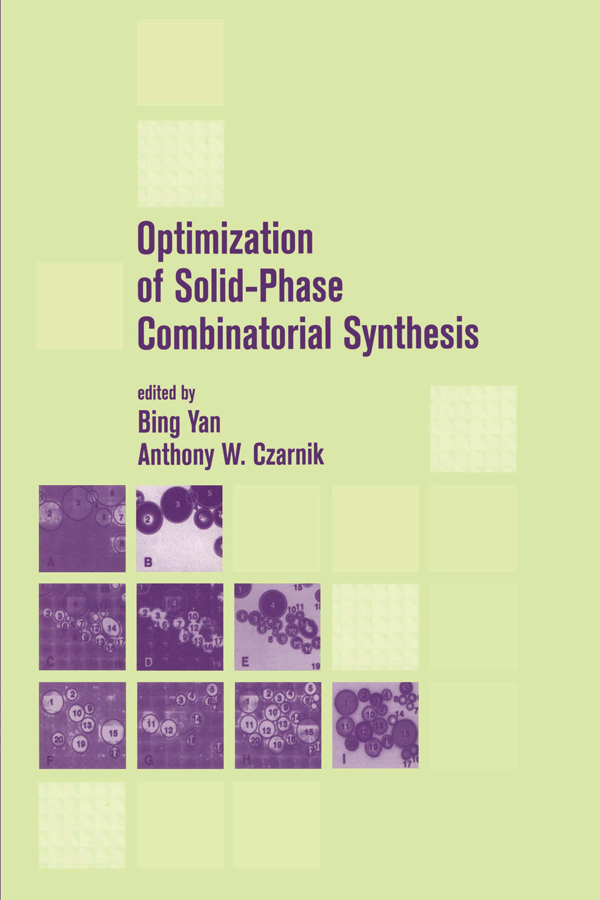 Optimization of Solid-Phase Combinatorial Synthesis: 1st Edition (Paperback) book cover