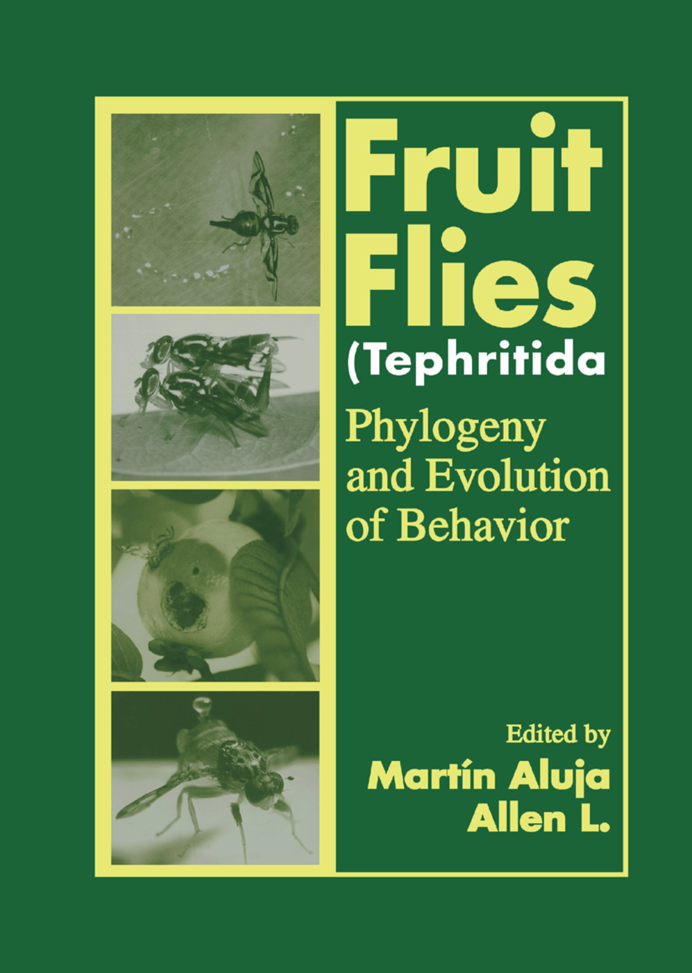 Fruit Flies (Tephritidae): Phylogeny and Evolution of Behavior, 1st Edition (Paperback) book cover