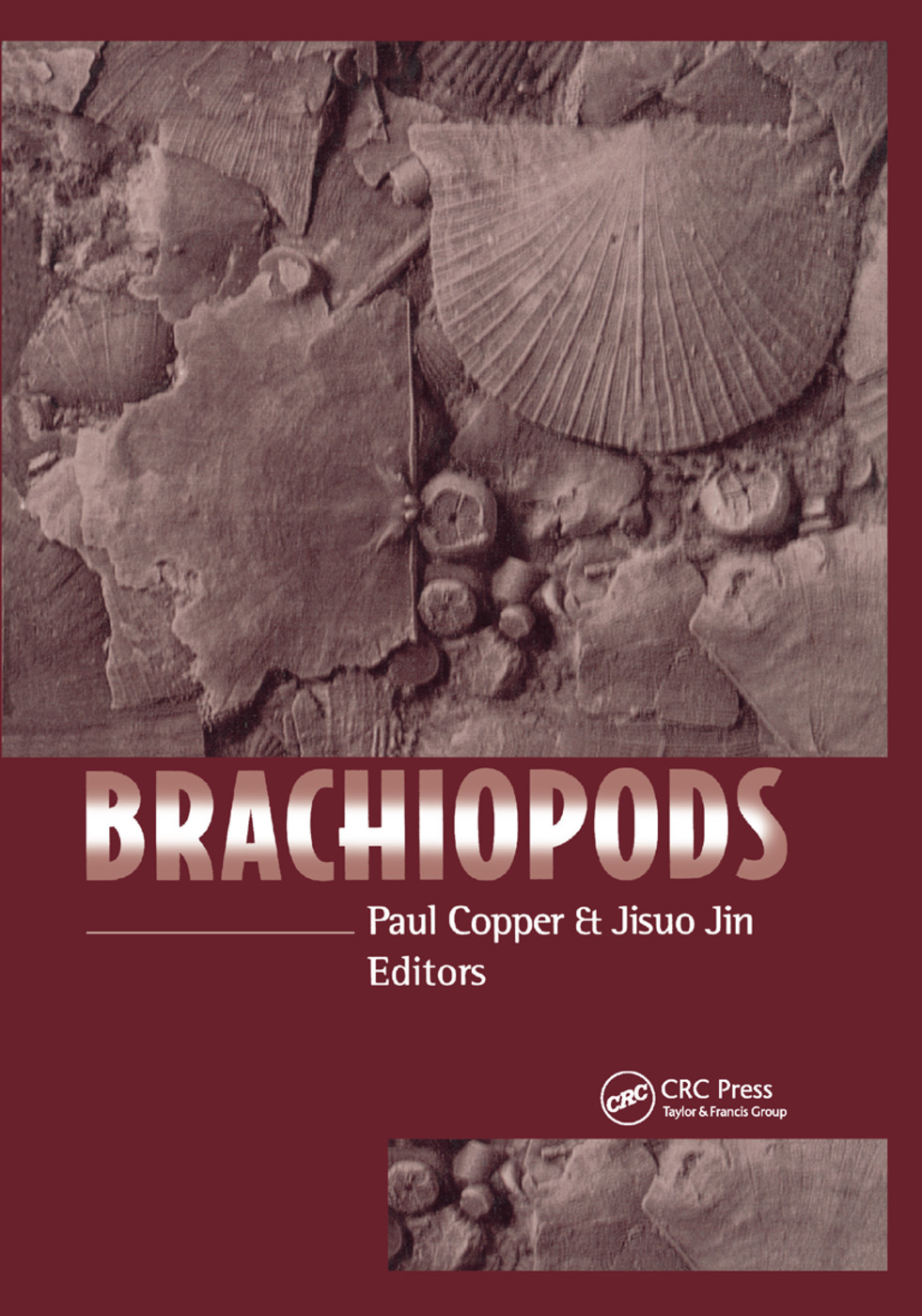 Brachiopods: 1st Edition (Paperback) book cover