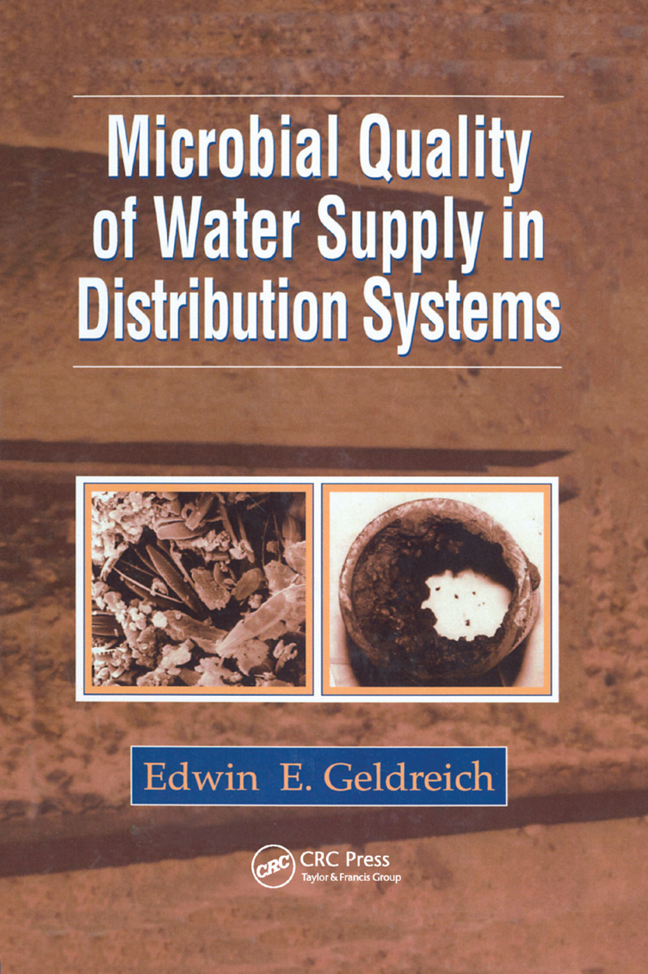 Microbial Quality of Water Supply in Distribution Systems: 1st Edition (Paperback) book cover
