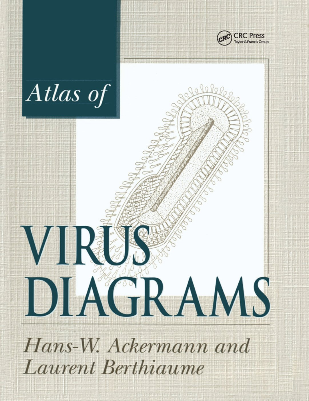 Atlas of Virus Diagrams: 1st Edition (Paperback) book cover