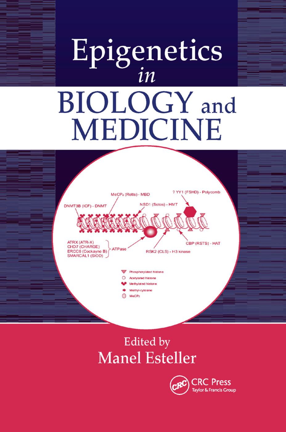 Epigenetics in Biology and Medicine: 1st Edition (Paperback) book cover
