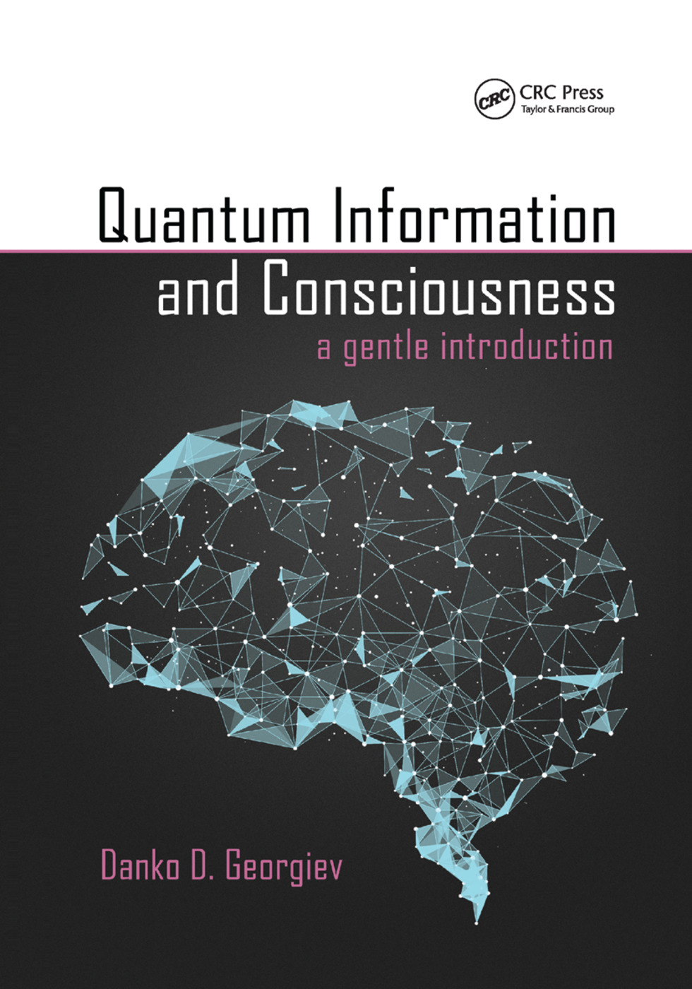 Quantum Information and Consciousness: A Gentle Introduction, 1st Edition (Paperback) book cover