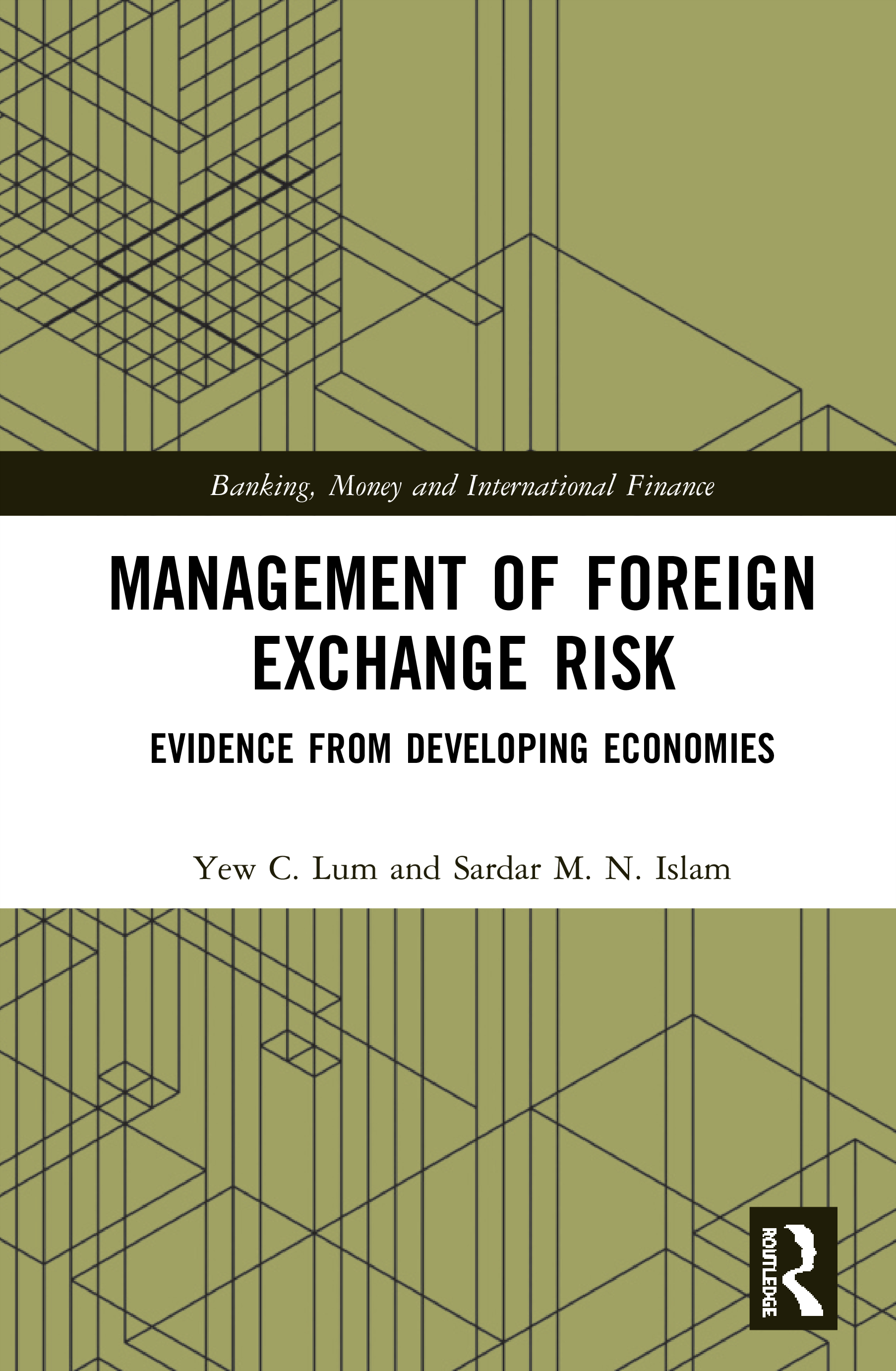 Management of Foreign Exchange Risk: Evidence from Developing Economies book cover