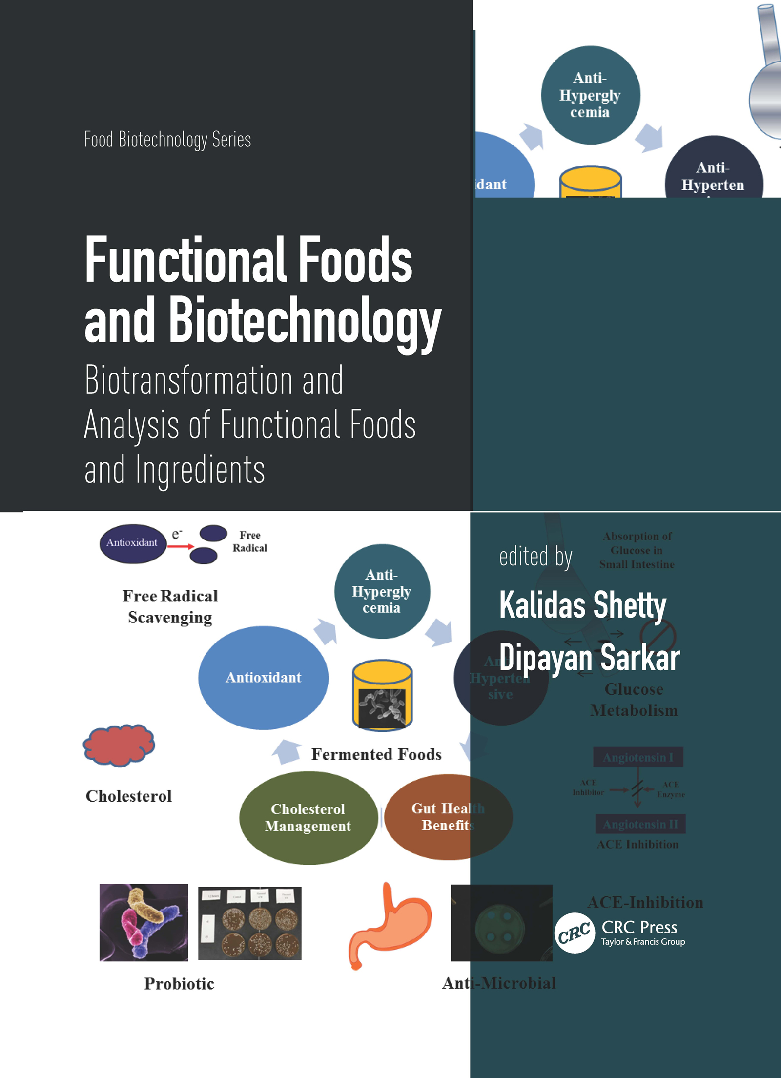 Functional Foods and Biotechnology: Biotransformation and Analysis of Functional Foods and Ingredients book cover