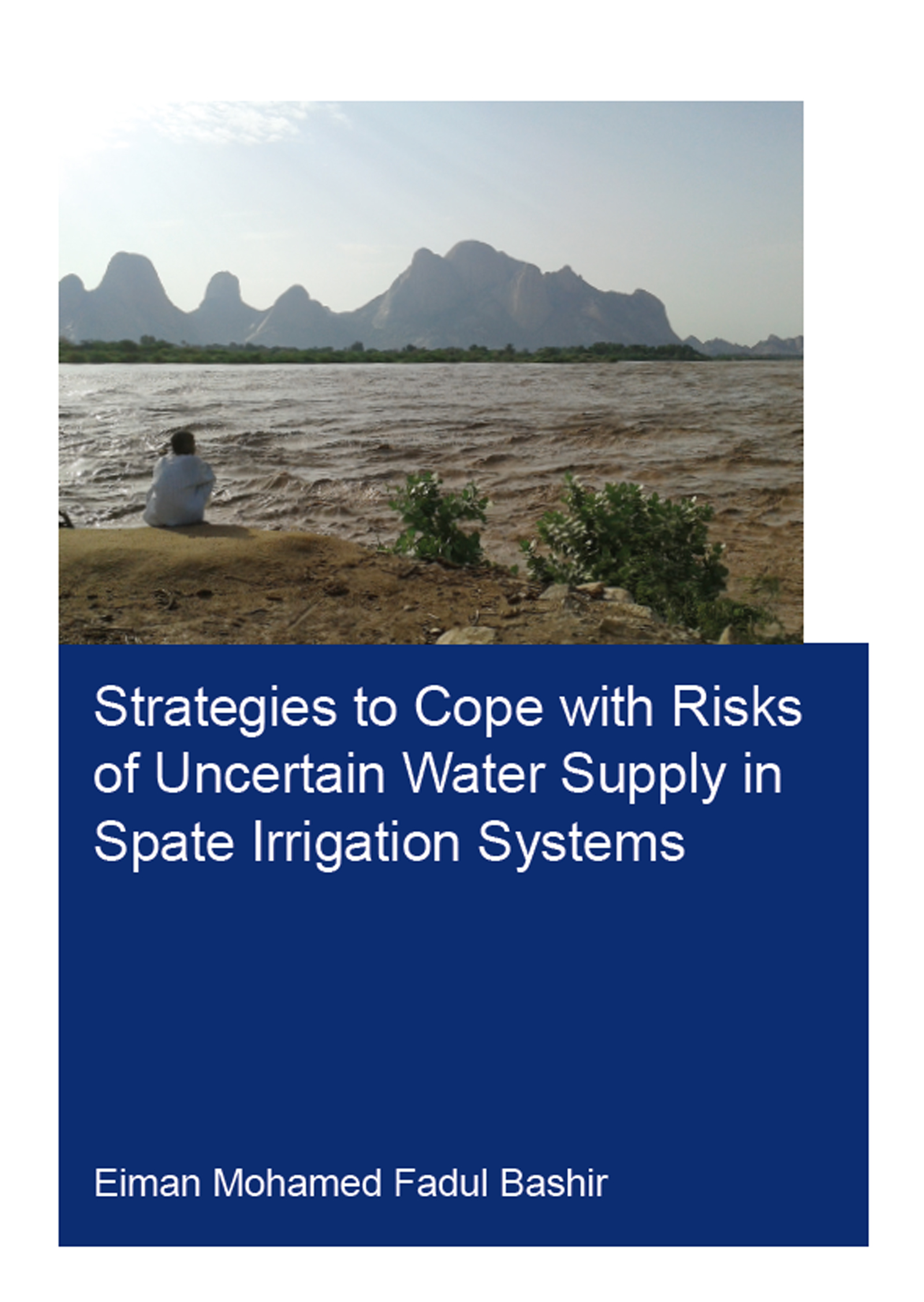 Strategies to Cope with Risks of Uncertain Water Supply in Spate Irrigation Systems: Case Study: Gash Agricultural Scheme in Sudan book cover
