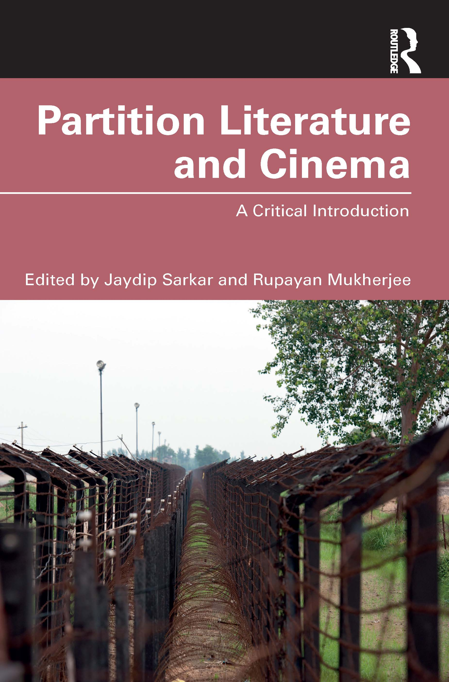 Partition Literature and Cinema: A Critical Introduction book cover