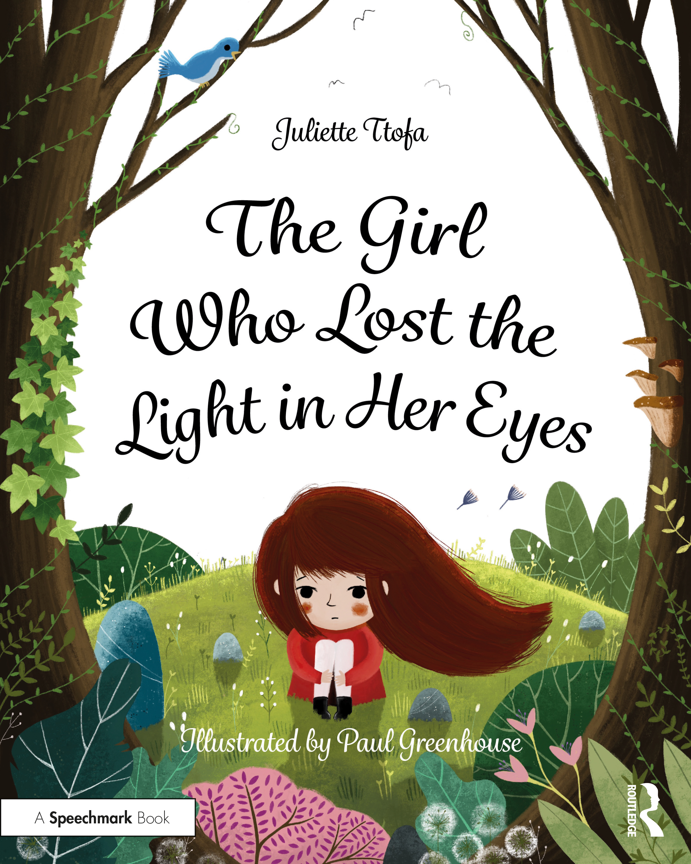The Girl Who Lost the Light in Her Eyes: A Storybook to Support Children and Young People Who Experience Loss book cover