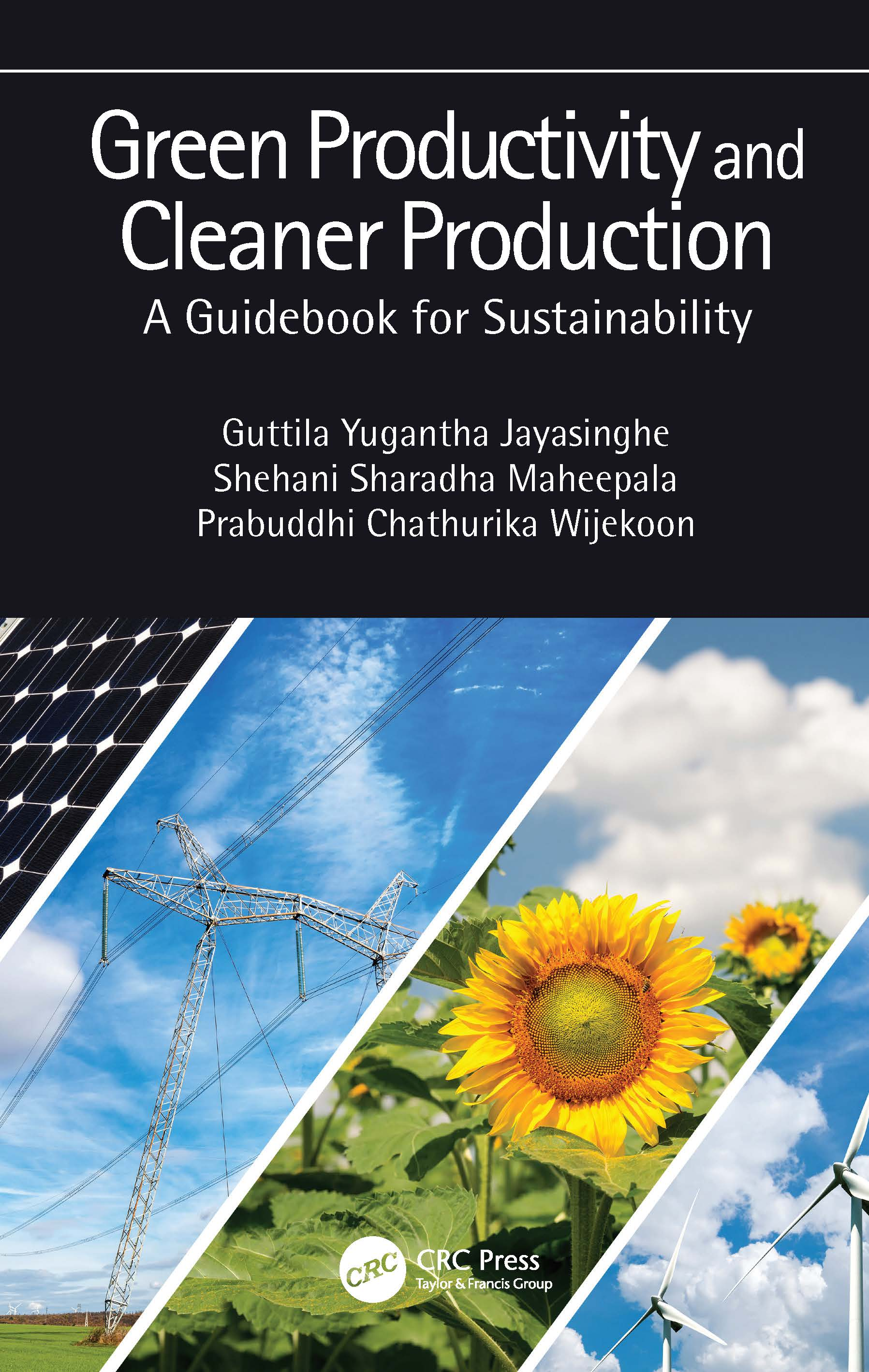 Green Productivity and Cleaner Production: A Guidebook for Sustainability book cover