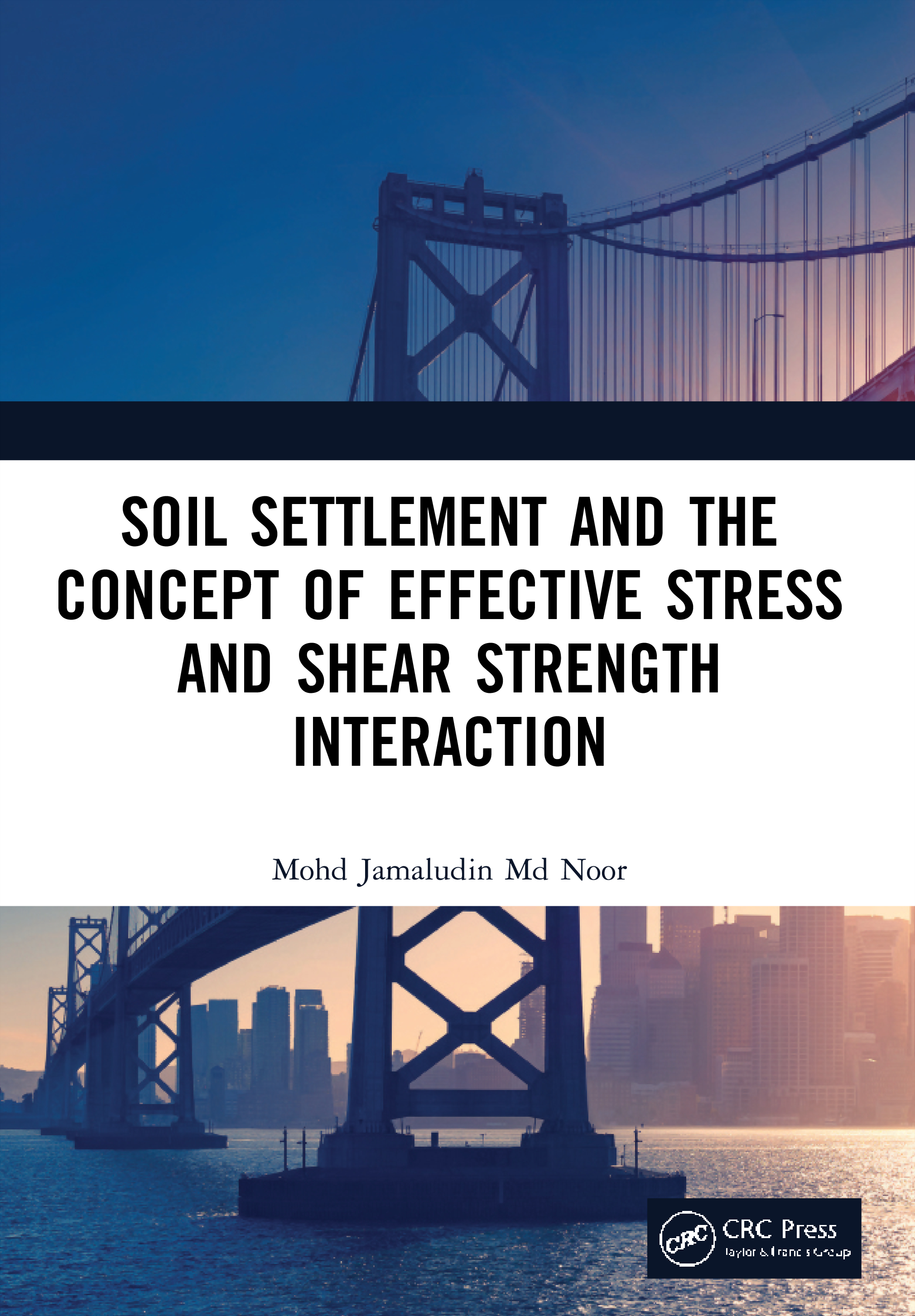Soil Settlement and the Concept of Effective Stress and Shear Strength Interaction