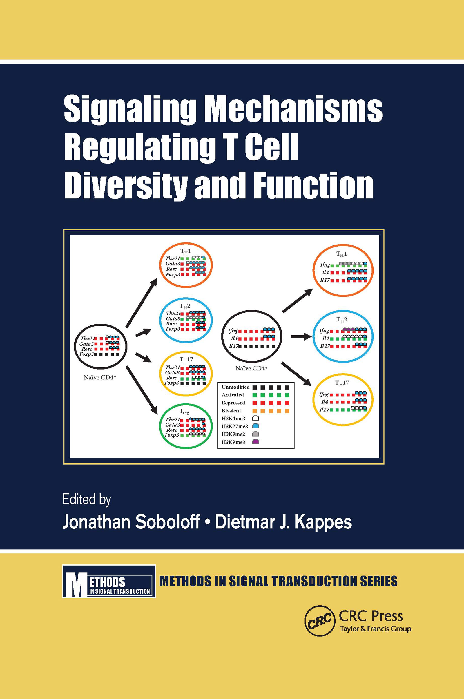 Signaling Mechanisms Regulating T Cell Diversity and Function