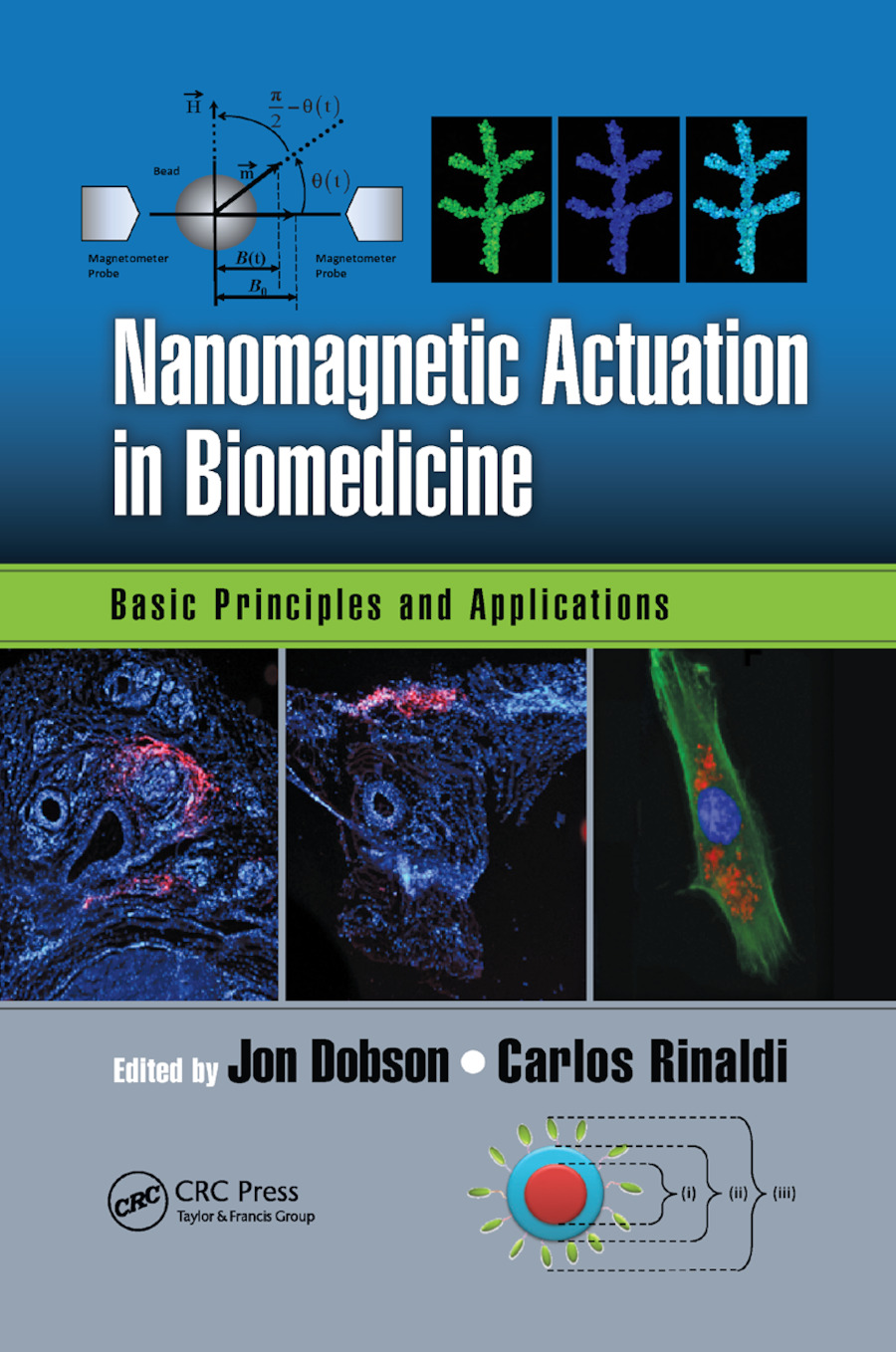 Nanomagnetic Actuation in Biomedicine: Basic Principles and Applications book cover