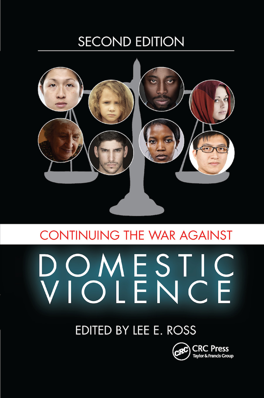 Continuing the War Against Domestic Violence book cover