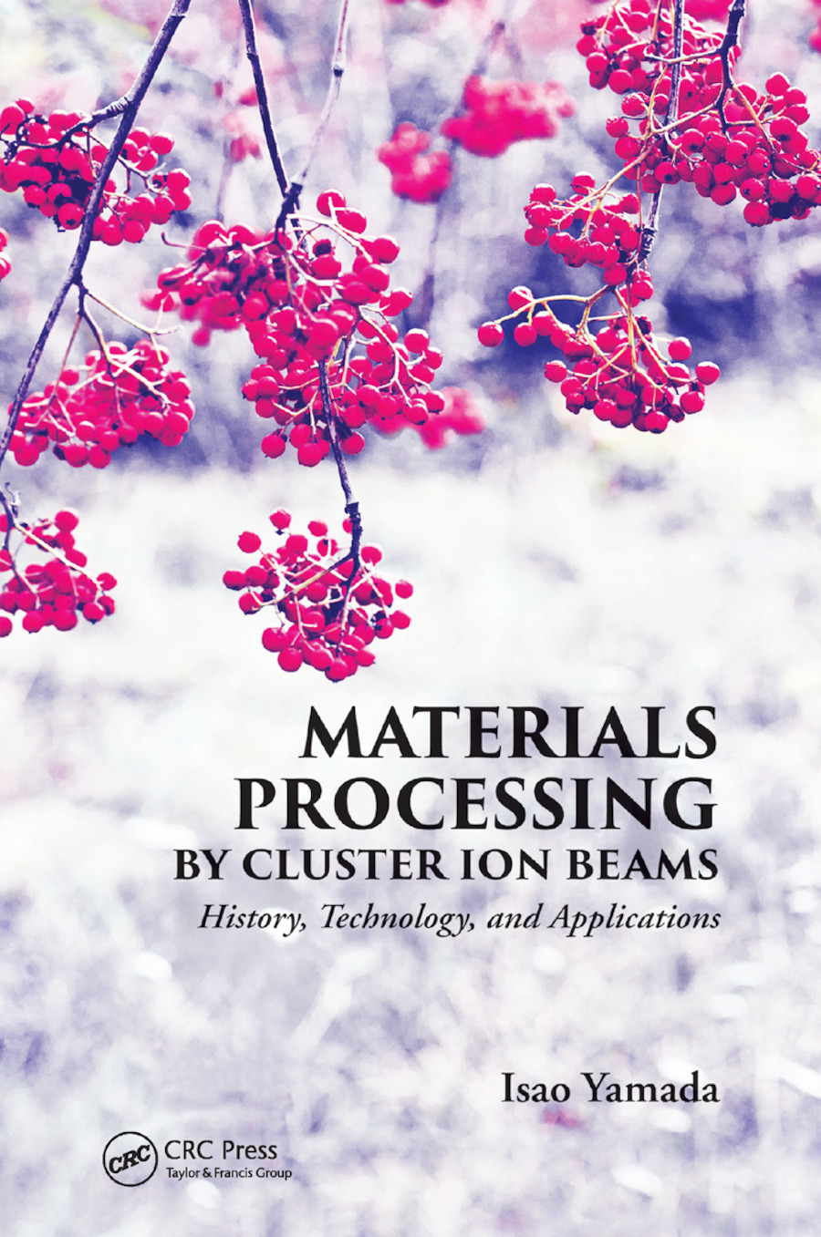 Materials Processing by Cluster Ion Beams: History, Technology, and Applications, 1st Edition (Paperback) book cover