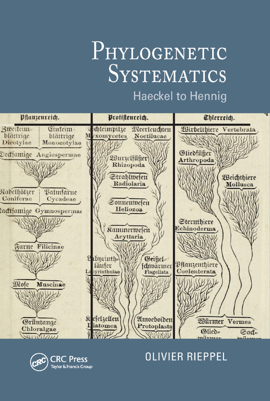 Phylogenetic Systematics: Haeckel to Hennig, 1st Edition (Paperback) book cover