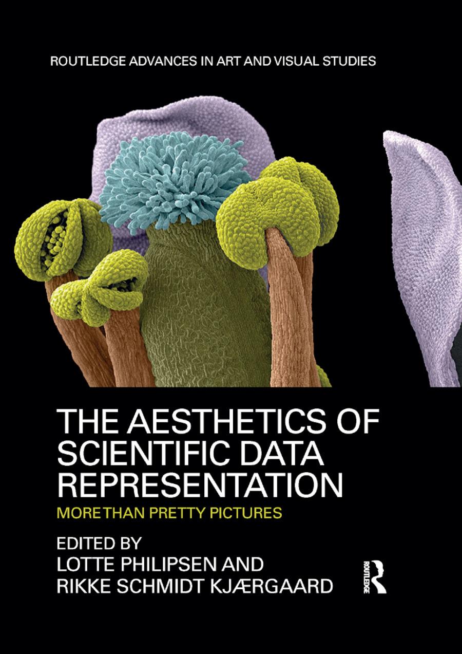 The Aesthetics of Scientific Data Representation