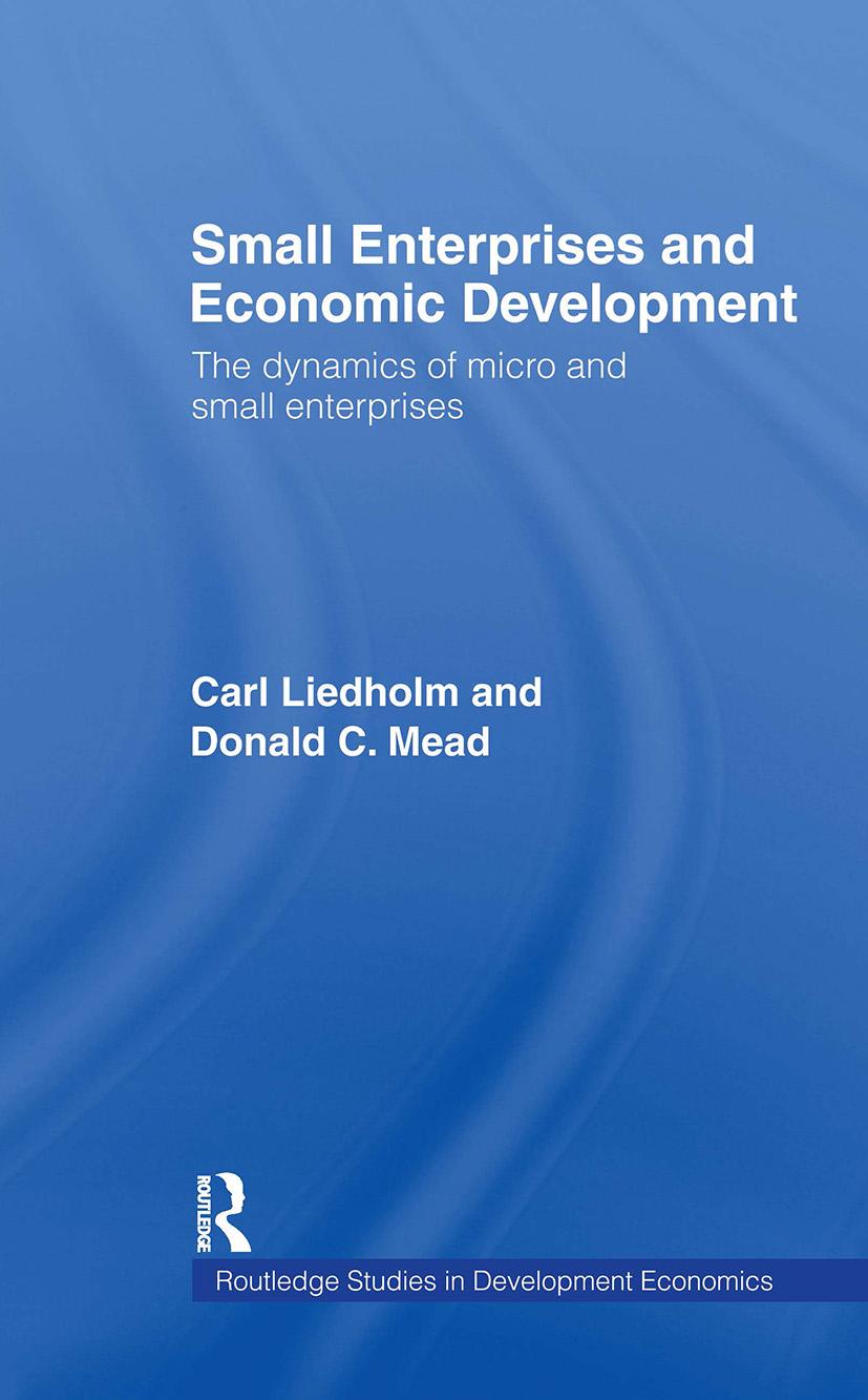 Small Enterprises and Economic Development: The Dynamics of Micro and Small Enterprises, 1st Edition (Hardback) book cover