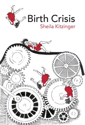 Birth Crisis: 1st Edition (Paperback) book cover