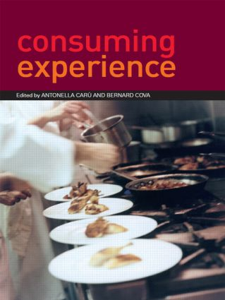 Consuming Experience: 1st Edition (Paperback) book cover