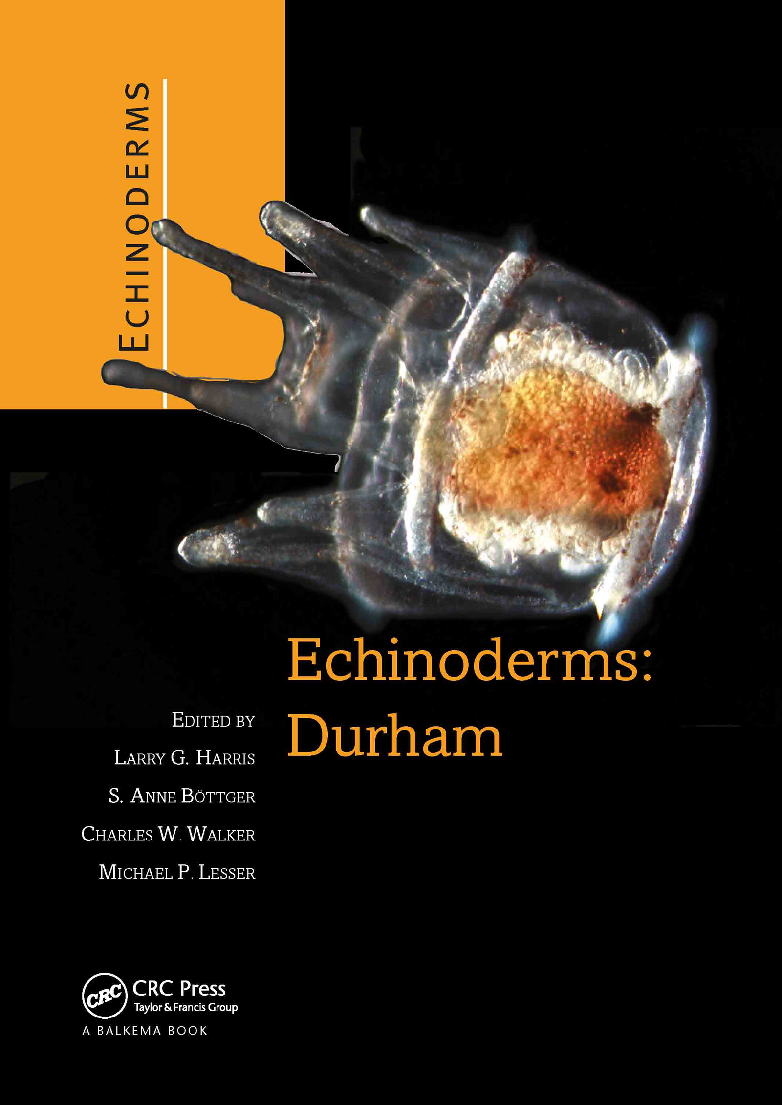 Echinoderms: Durham: Proceedings of the 12th International Echinoderm Conference, 7-11 August 2006, Durham, New Hampshire, U.S.A., 1st Edition (Hardback) book cover