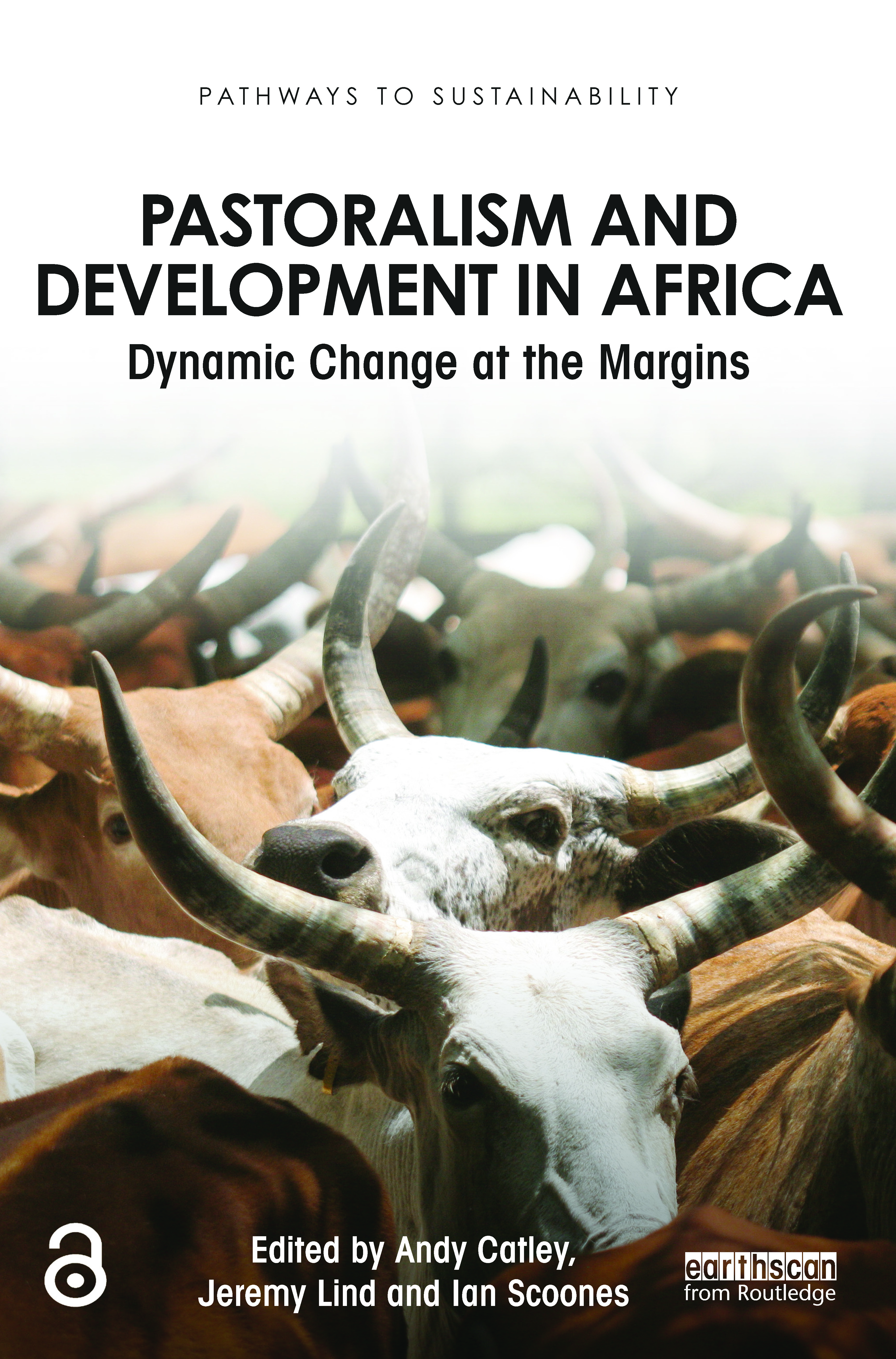 Pastoralism and Development in Africa: Dynamic Change at the Margins (Paperback) book cover