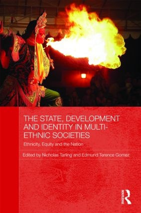 The State, Development and Identity in Multi-Ethnic Societies: Ethnicity, Equity and the Nation (Paperback) book cover
