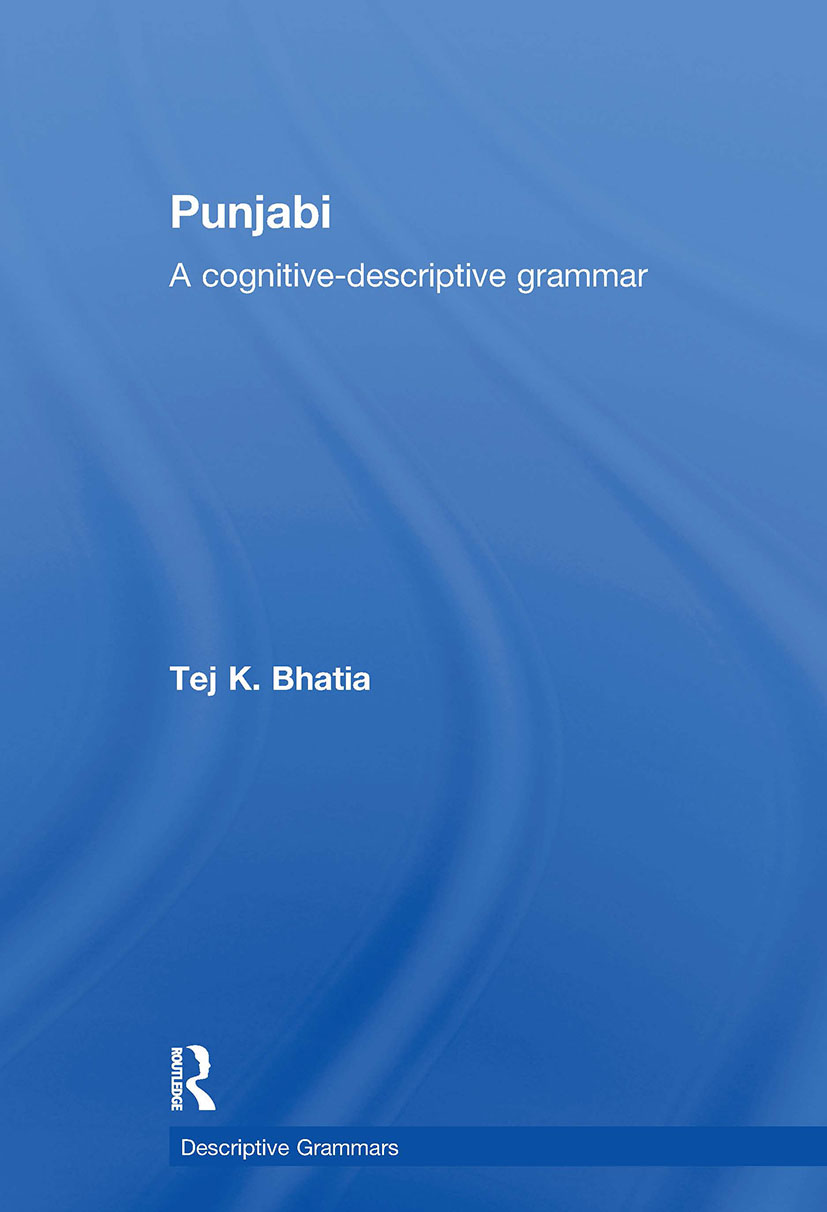Punjabi: 1st Edition (Paperback) book cover