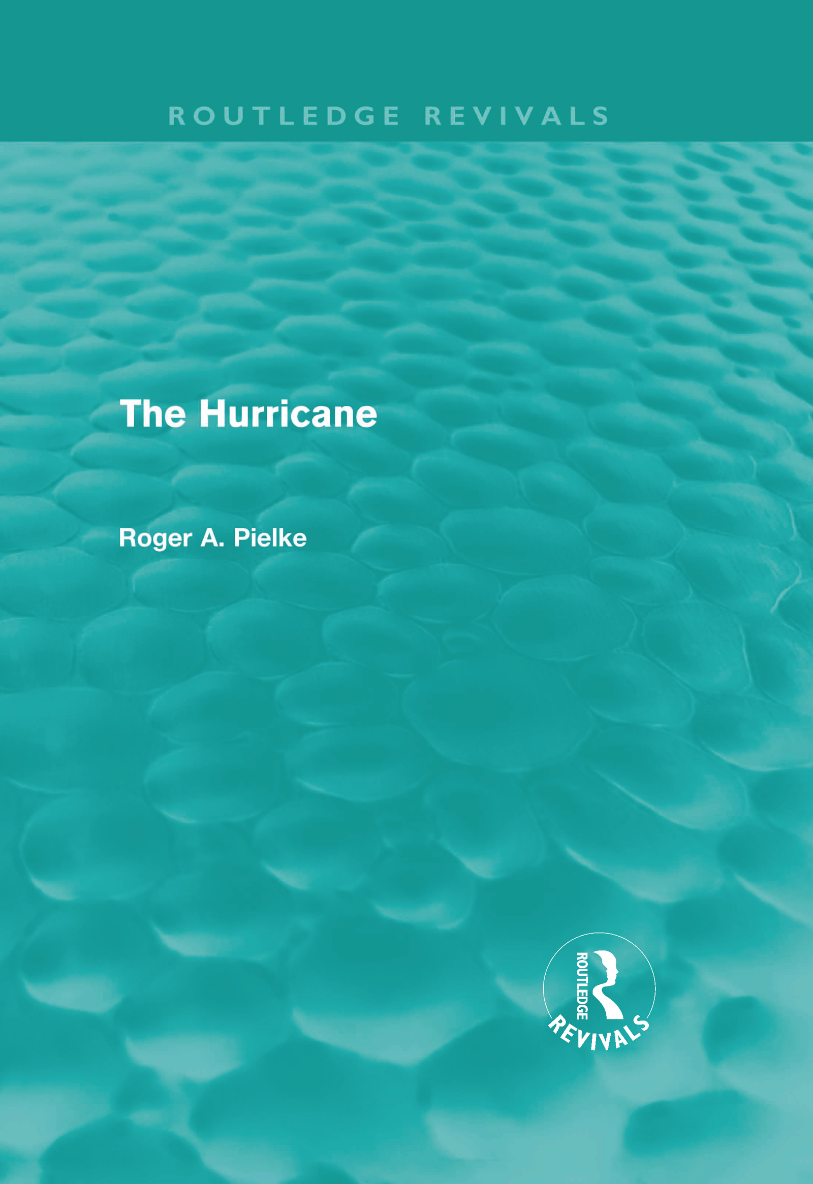 The Hurricane (Hardback) book cover