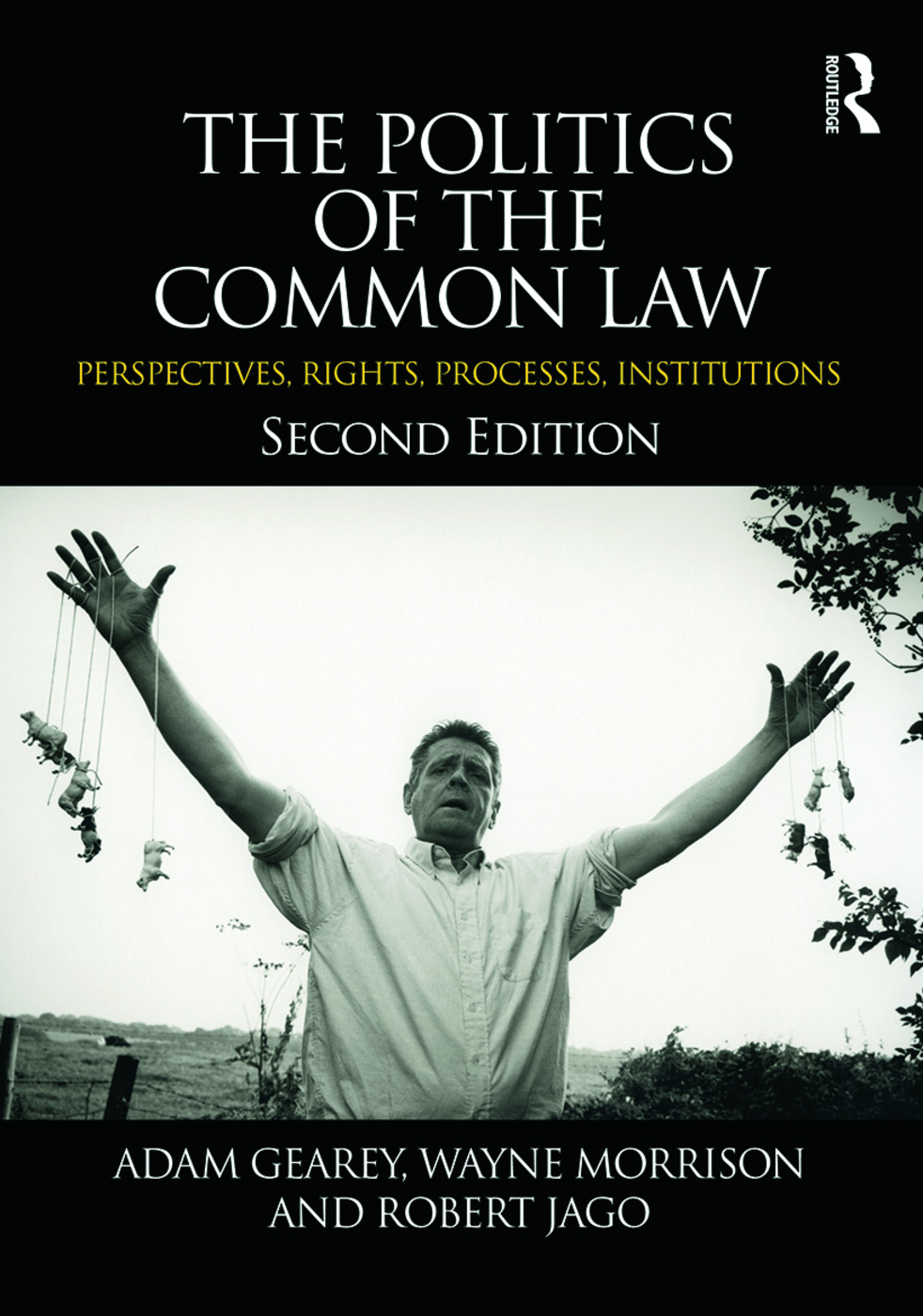 The Politics of the Common Law: Perspectives, Rights, Processes, Institutions, 2nd Edition (Paperback) book cover