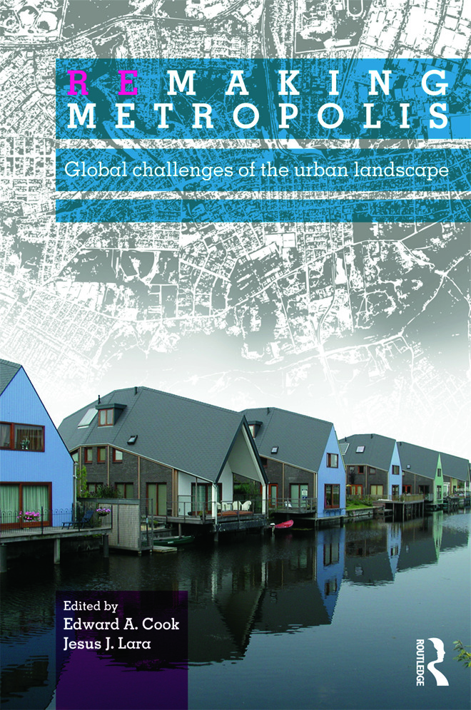 Remaking Metropolis: Global Challenges of the Urban Landscape (Paperback) book cover