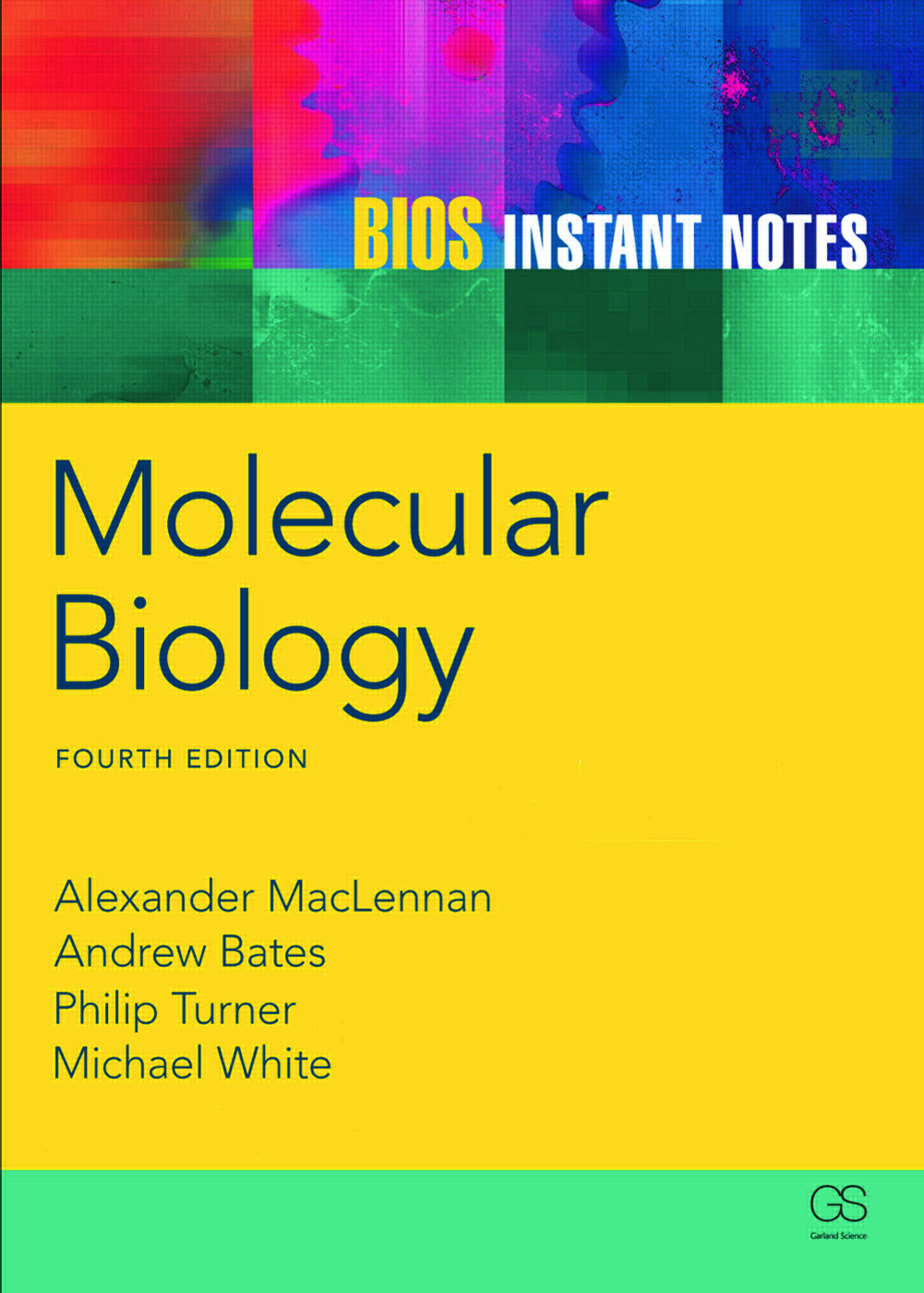 BIOS Instant Notes in Molecular Biology: 4th Edition (Paperback) book cover