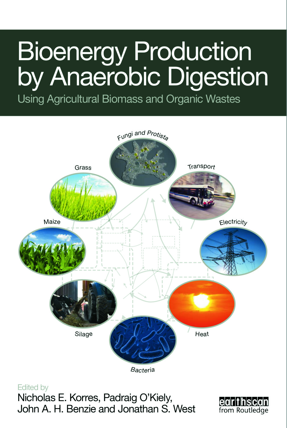 Bioenergy Production by Anaerobic Digestion: Using Agricultural Biomass and Organic Wastes (Hardback) book cover