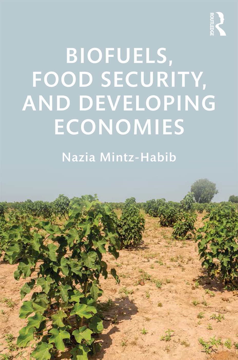 Biofuels, Food Security, and Developing Economies book cover