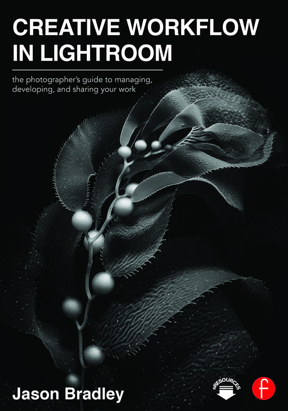 Creative Workflow in Lightroom: The photographer's guide to managing, developing, and sharing your work, 1st Edition (Paperback) book cover
