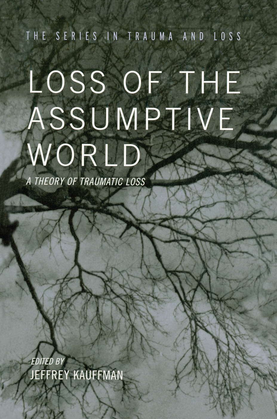 Loss of the Assumptive World: A Theory of Traumatic Loss, 1st Edition (Paperback) book cover