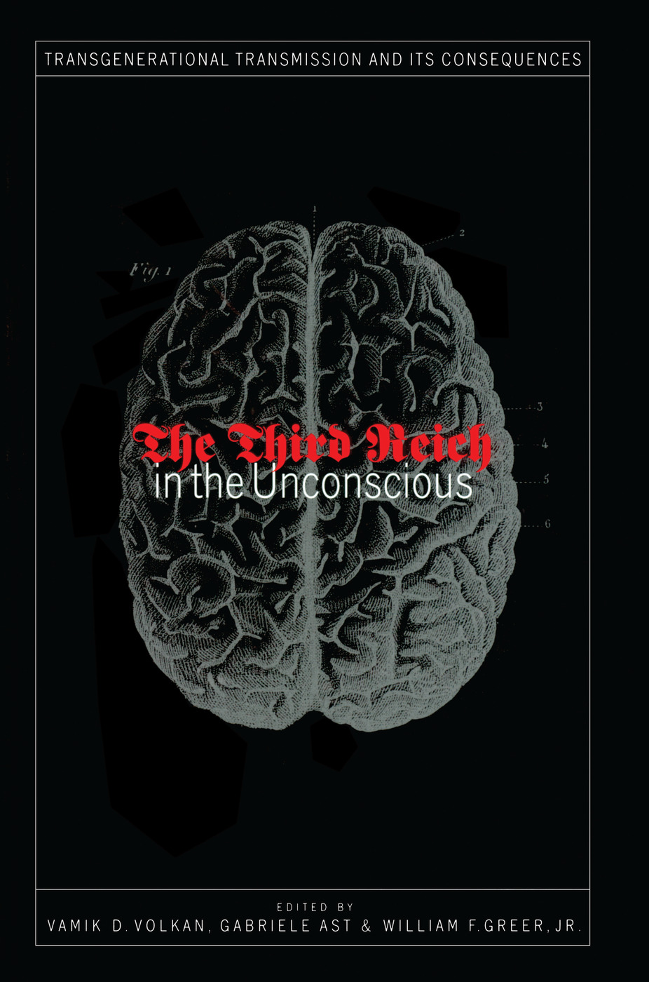 Third Reich in the Unconscious