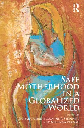 Safe Motherhood in a Globalized World (Paperback) book cover