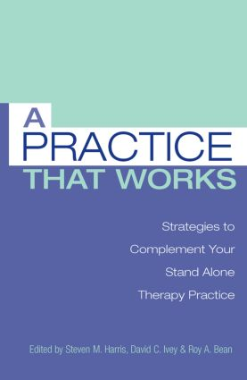 A Practice that Works: Strategies to Complement Your Stand Alone Therapy Practice (Paperback) book cover