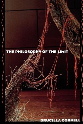The Philosophy of the Limit (Paperback) book cover