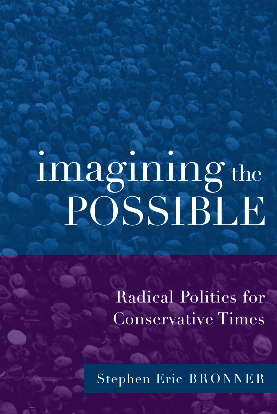 Imagining the Possible: Radical Politics for Conservative Times (Paperback) book cover
