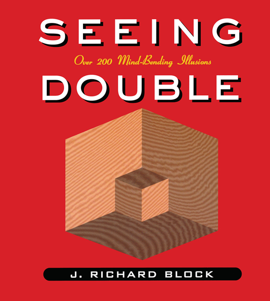 Seeing Double: 1st Edition (Paperback) book cover