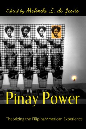 Pinay Power: Peminist Critical Theory, 1st Edition (Paperback) book cover