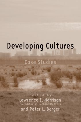 Developing Cultures: Case Studies (Paperback) book cover